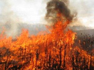 prairie controlled burn fire