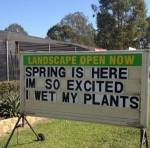 spring is here! I'm so excited, I wet my plants - sign