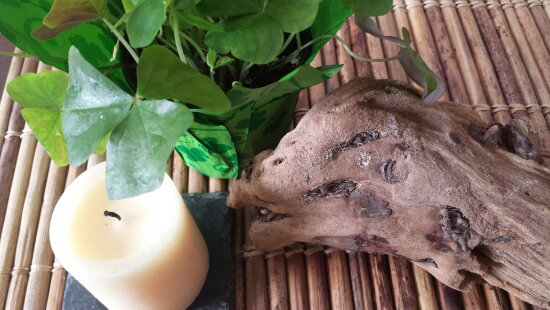 candle, shamrock plant and driftwood on bamboo placemat