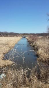 Canal thru a wetland at Mchenry dam