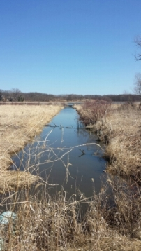 Canal thru a wetland at Mchenry dam