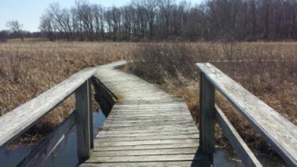 Wooden floating bridge at mchenry dam