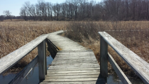 Wooden floating bridge at mchenry dam