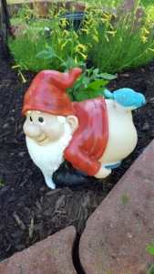 pooping gnome