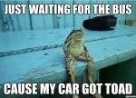 Just waiting for the bus because my car got toad, meme